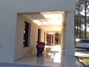 Casa en El Pinar 13
